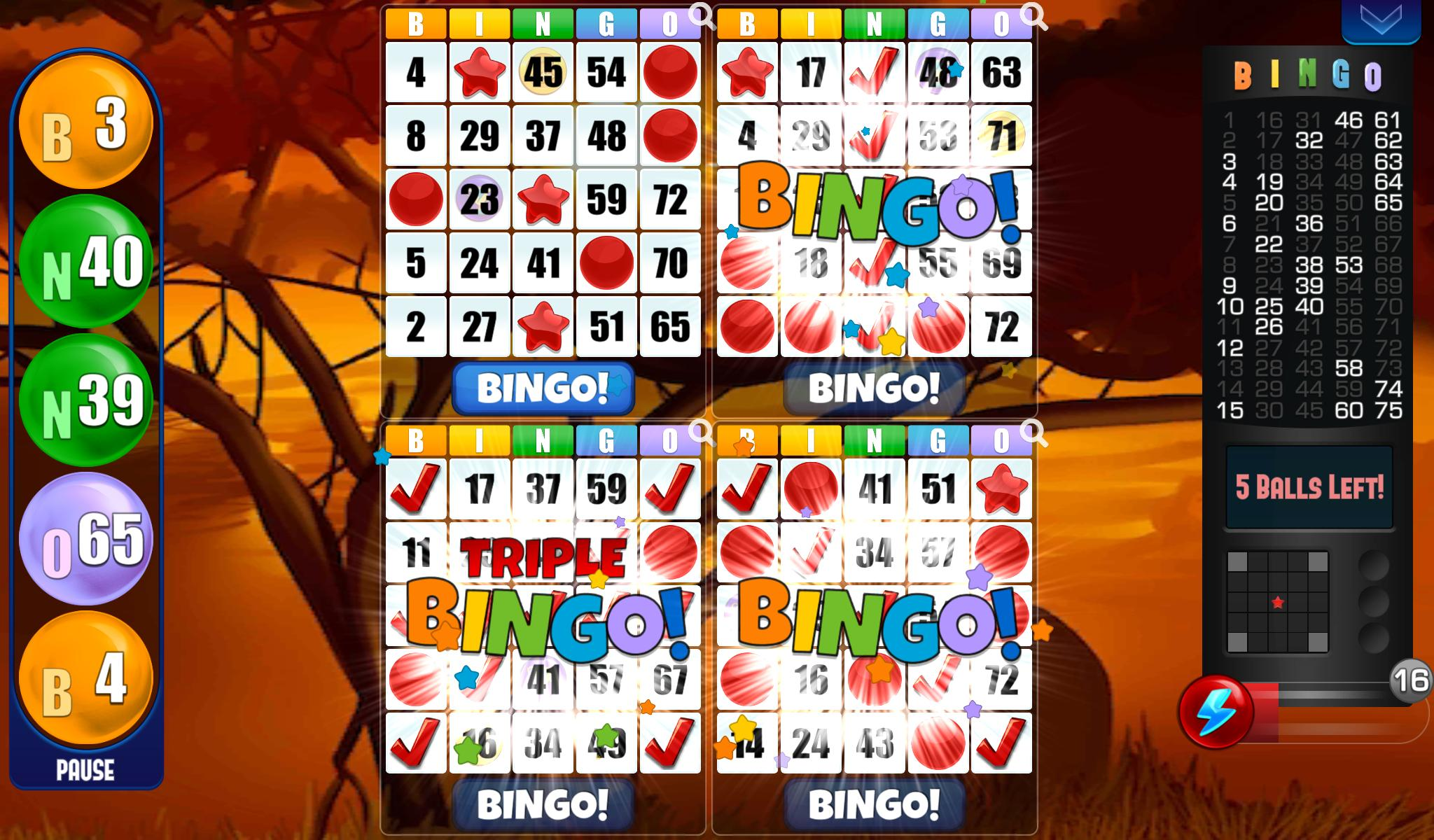 Bingo - Free Bingo Games 2.05.003 Screenshot 3