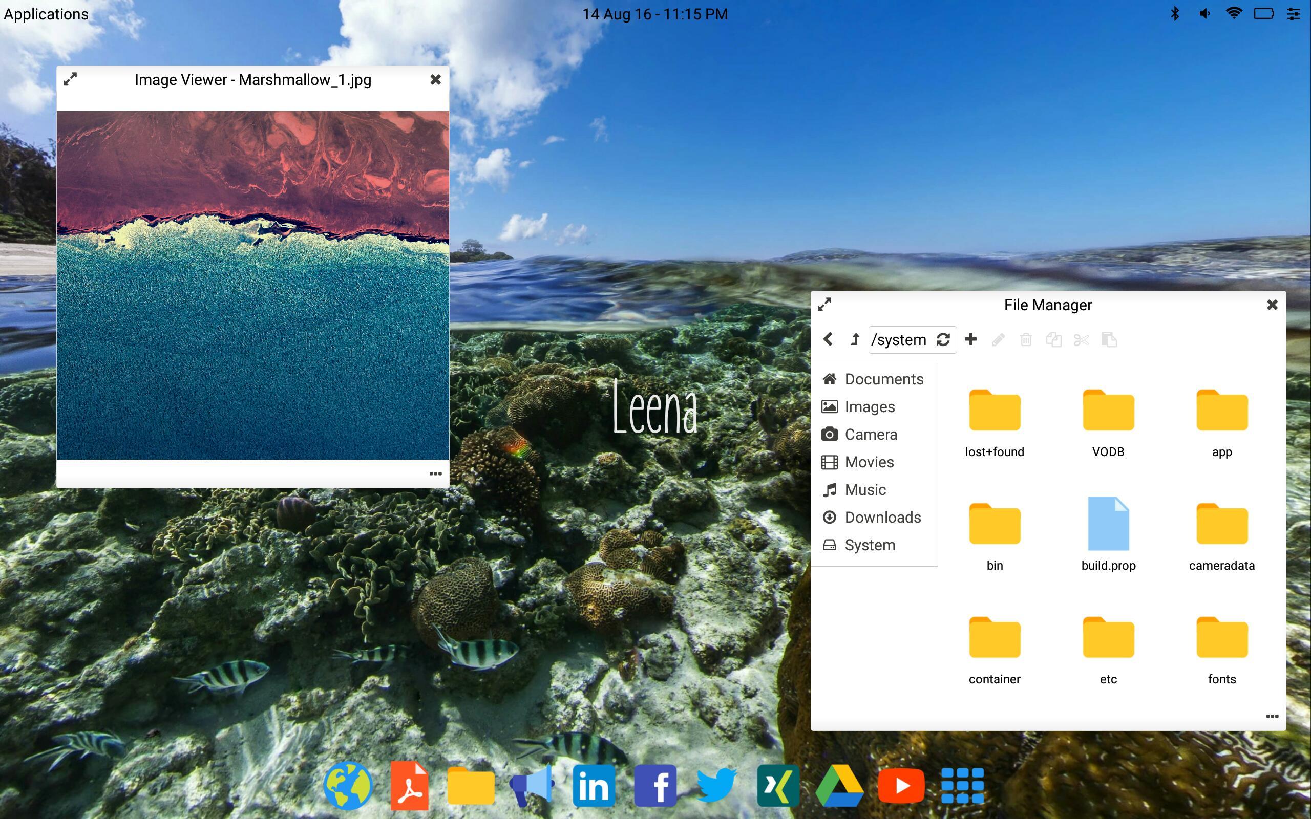 Leena Desktop UI (Multiwindow) 0.4.2 Screenshot 1
