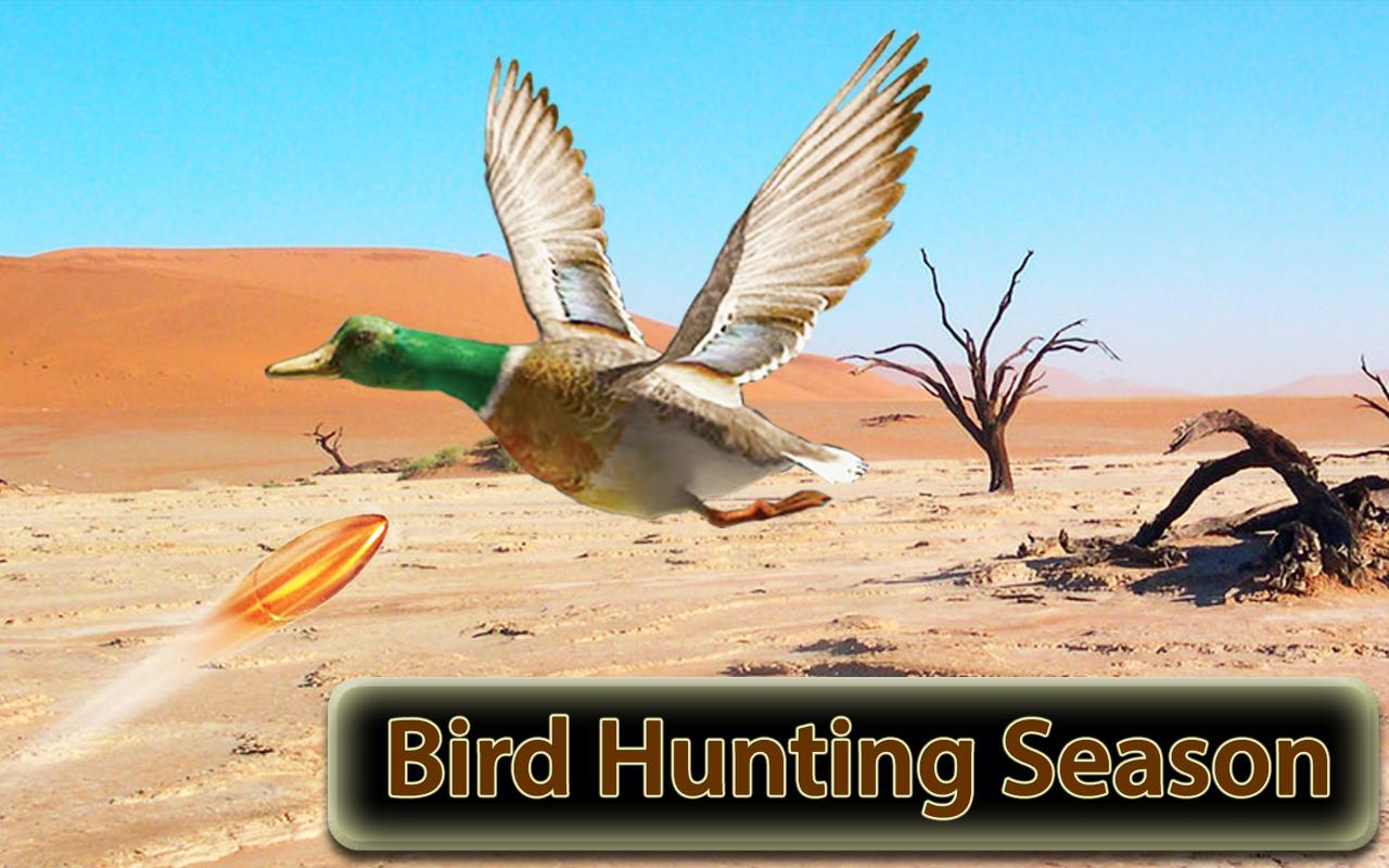 Desert Birds Sniper Shooter - Bird Hunting 2019 4.0 Screenshot 1