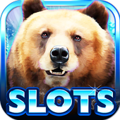 Slot Machine: Bear Slots app icon