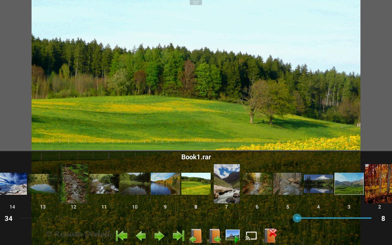 Perfect Viewer 4.5.1.2 Screenshot 17