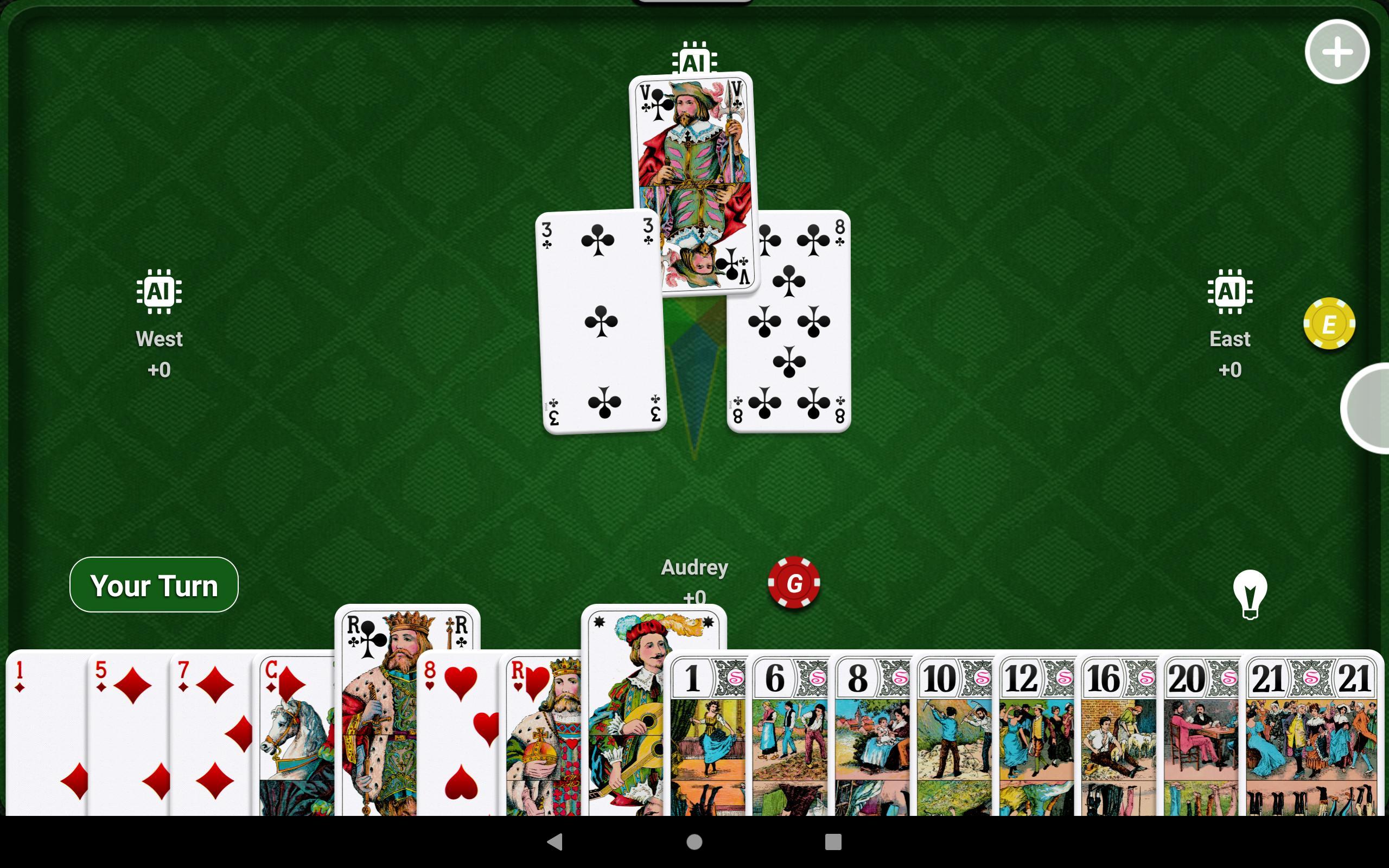 SHUA Tarot 2.3.2 Screenshot 13