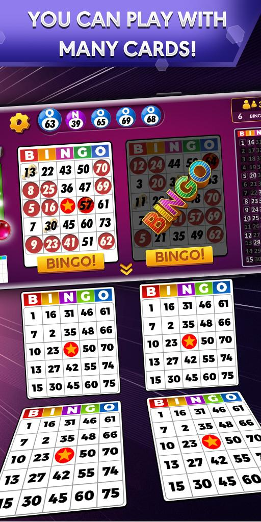Bingo Offline Free Bingo Games 2.1.1 Screenshot 1