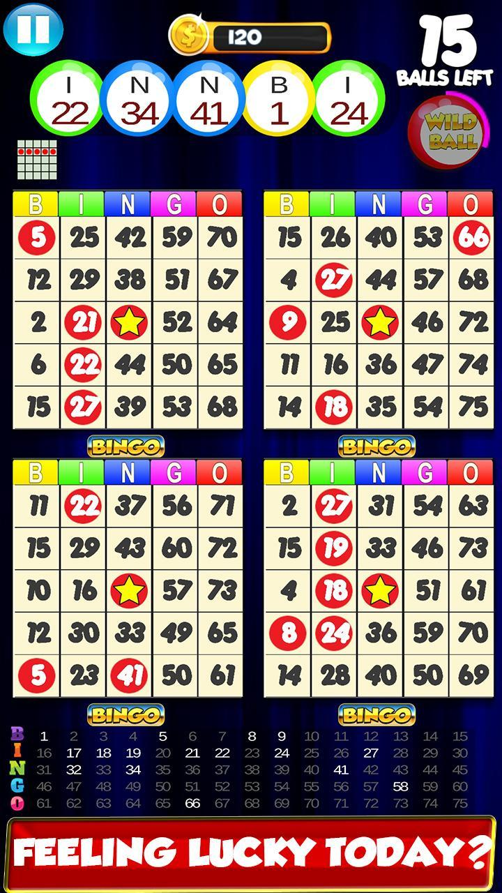 Bingo: New Free Cards Game Vegas and Casino Feel 2.1 Screenshot 1