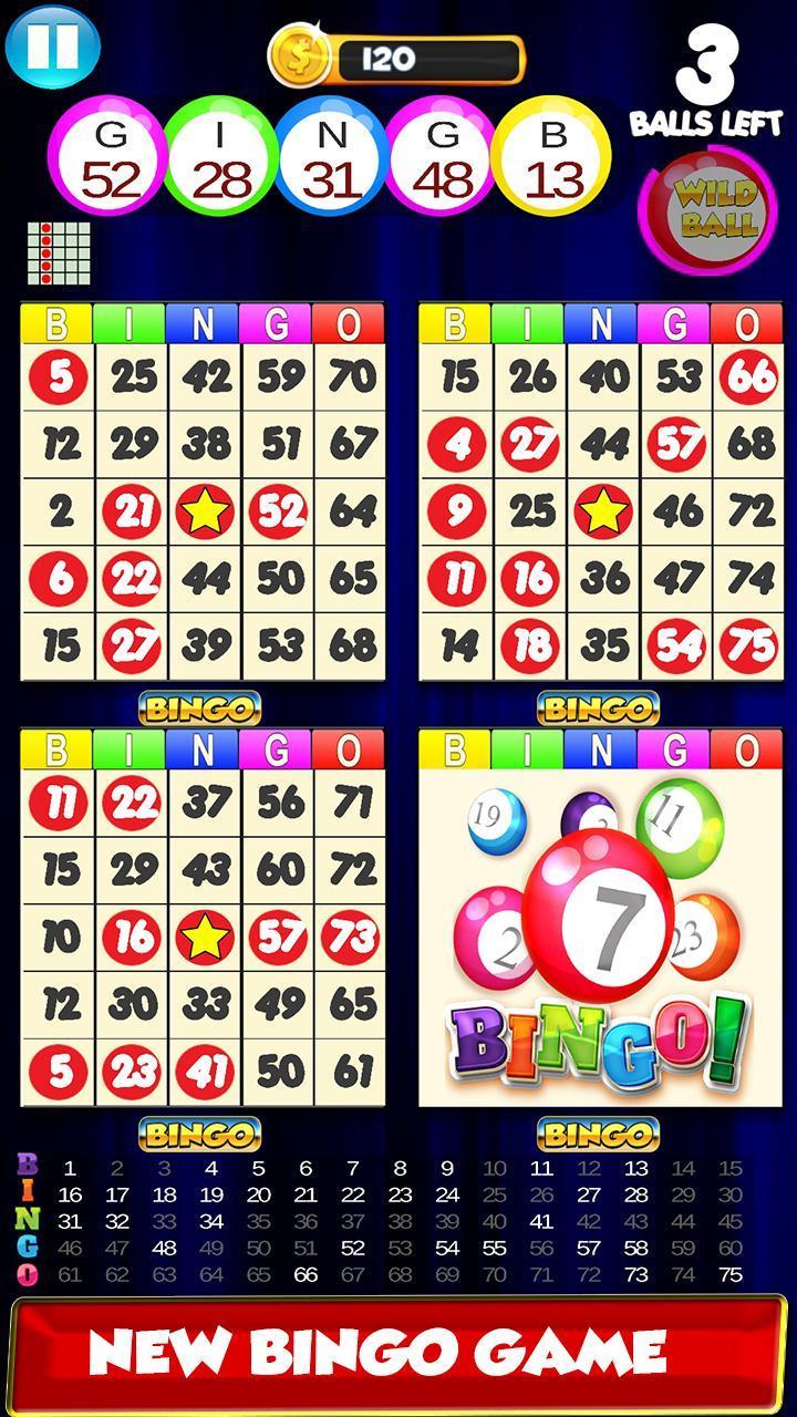 Bingo: New Free Cards Game Vegas and Casino Feel 2.1 Screenshot 6