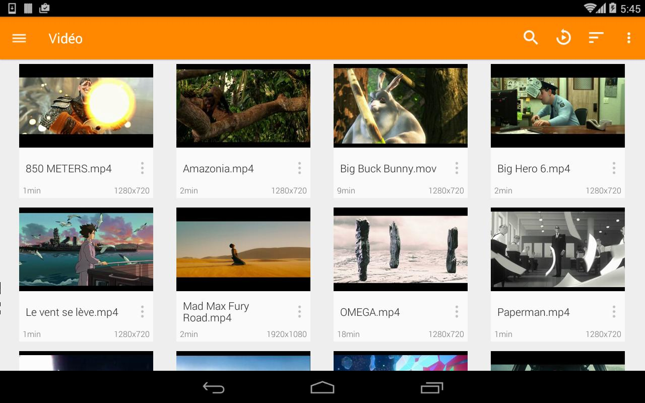 VLC for Android 3.2.12 Screenshot 17